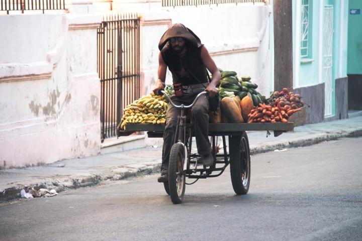 Buchmesse Havanna 2012 563