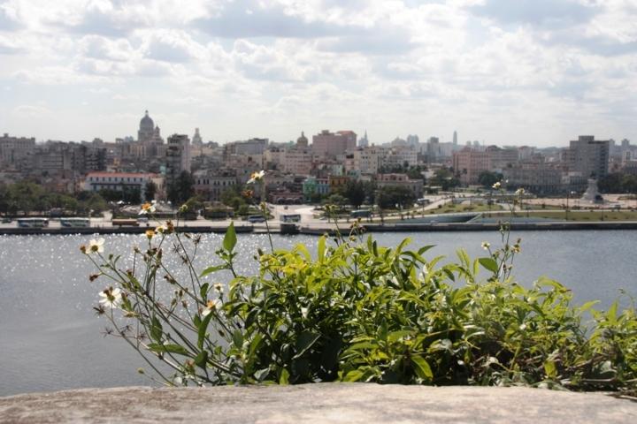 Buchmesse Havanna 2012 972